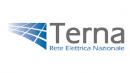 Terna logo